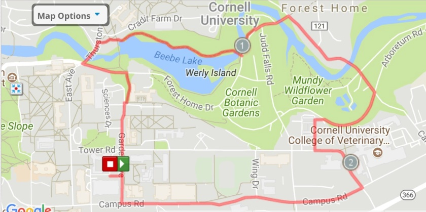 Great 5K Runs from the Cornell Campus – The Run Is the Reward