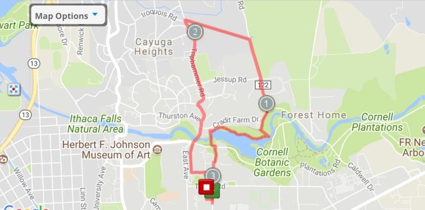 Jogging Tours - Palmer Woods